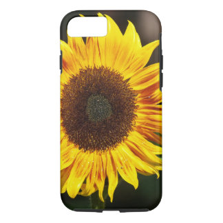 Bright Yellow Sunflower iPhone 8/7 Case