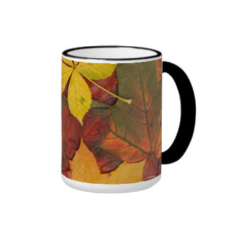 Brightly Colored Fall Leaves Mug
