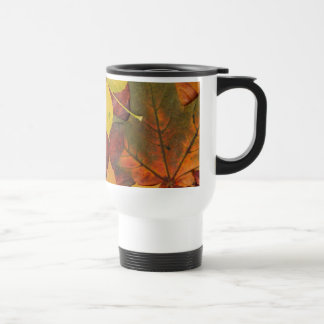 Brightly Colored Fall Leaves Mugs