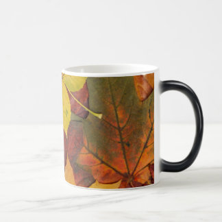 Brightly Colored Fall Leaves Coffee Mugs