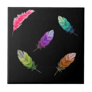 Brightly Colored Feathers On Black Ceramic Tile