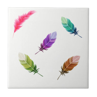 Brightly Colored Feathers On White Ceramic Tile