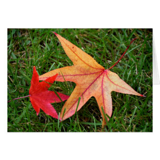 Brightly Colorful Maple Leaf Card