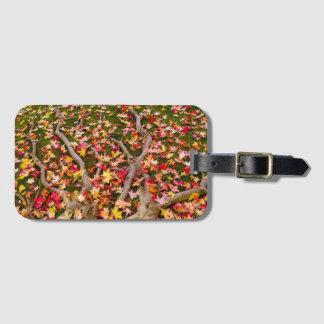 Brightly Colorful Maple Leaf Luggage Tag