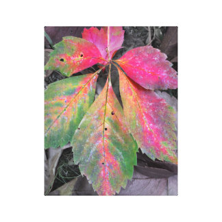 Brilliance Among the Grey - Autumn Leaf Gallery Wrapped Canvas