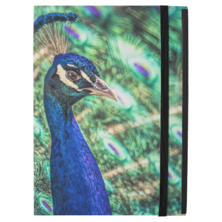 Brilliance in Blue &Green Peacock iPad Case