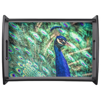 Brilliance in Blue &Green Peacock Serving Tray