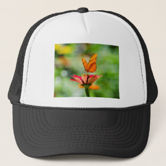 Brilliant Butterfly on Bright Orange Gerber Daisy Trucker Hat