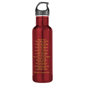 Brilliant in Red 710 Ml Water Bottle
