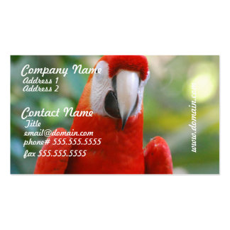 Brilliant Red Parrot Business Cards