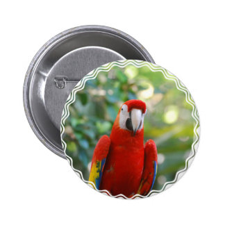 Brilliant Red Parrot Button