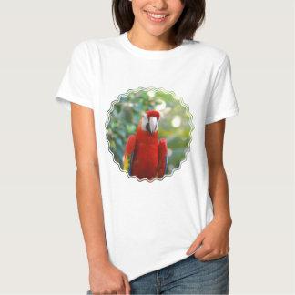 Brilliant Red Parrot Ladies T-Shirt