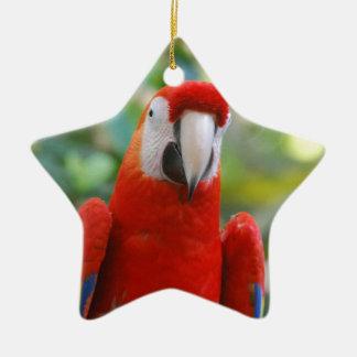Brilliant Red Parrot Ornament
