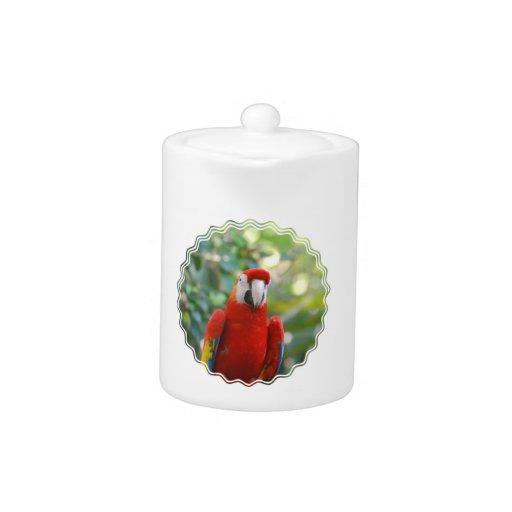 Brilliant Red Parrot Teapot