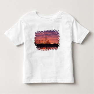 Brilliant sunset reflects into the Calamus River Toddler T-Shirt