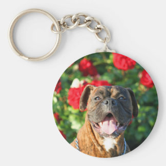 Brindle boxer dog keychain