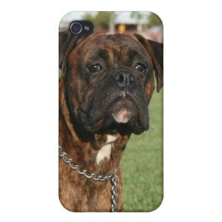 Brindle Boxer dog Speck Case iPhone 4/4S Covers