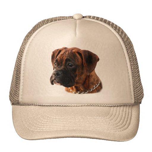 Brindle Boxer puppy Hat