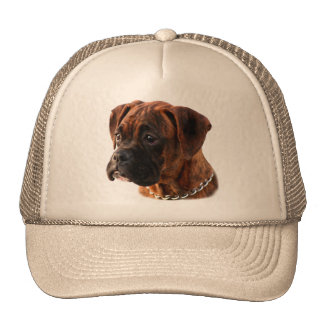 Brindle Boxer puppy Hat