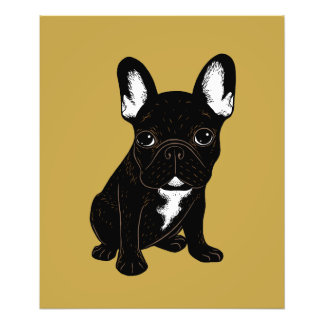 Brindle French Bulldog Photo Print