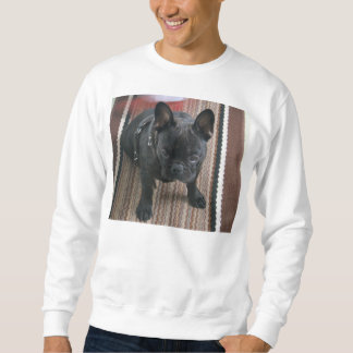Brindle_French_Bulldog sitting Sweatshirt