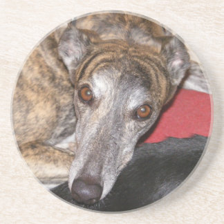 Brindle greyhound coaster