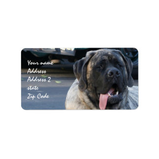Brindle Mastiff Dog Address Label