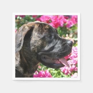 Brindle Mastiff puppy Paper Napkin