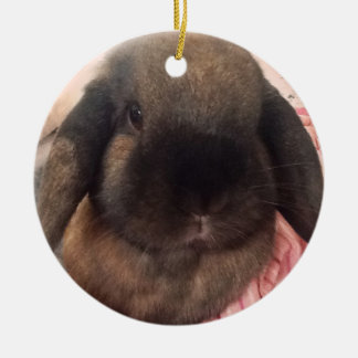 Bring some furriness to your tree ceramic ornament
