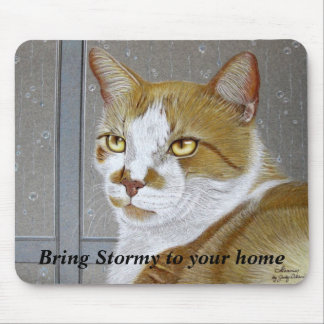 Bring Stormy To Your Home: mousepad
