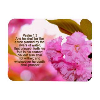 Bringeth Forth His Fruit Magnet