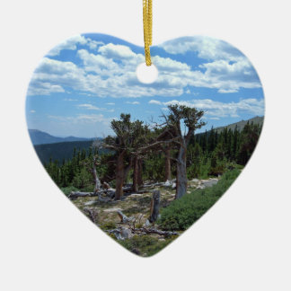 Bristlecone Pine Tree Ceramic Ornament