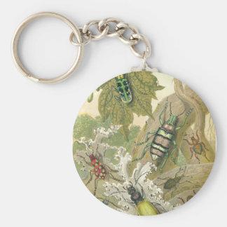 British Beetles Key Chains