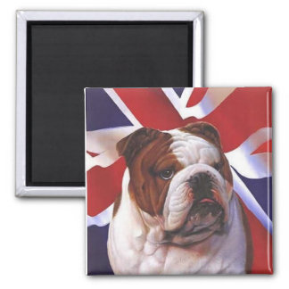 British Bull Dog Magnet