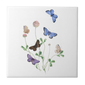 British Butterflies on Clover Ceramic Tile