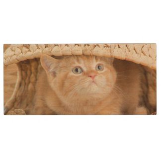 British Kitten Looking Out From Under A Basket Wood USB 2.0 Flash Drive