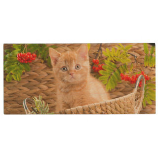 British Kitten Sitting In A Basket With Mountain Wood USB 2.0 Flash Drive