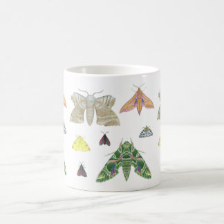 British Moths Mug