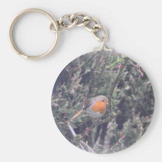 British Robin Basic Round Button Key Ring