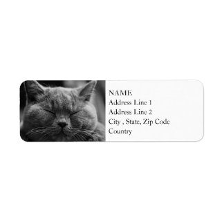 British Shorthair | Black and White | Cat Portrait Return Address Label