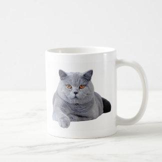 British shorthair cat basic white mug