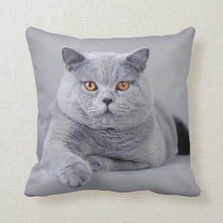 British shorthair cat cushion