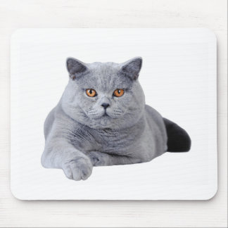 British shorthair cat mouse pad