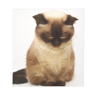 British Shorthair Cat Pet Mieze British Short Hair Notepad