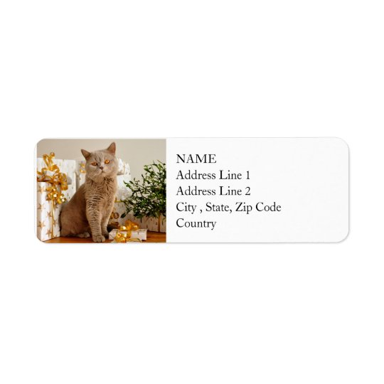 British Shorthair Cat Purr-fect Holiday Season Return Address Label