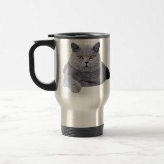 British shorthair cat stainless steel travel mug