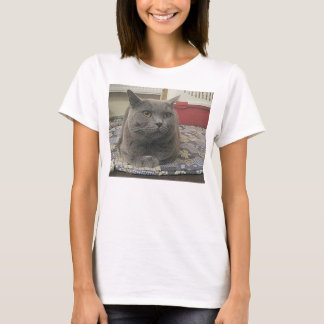 British_Shorthair_grey T-Shirt