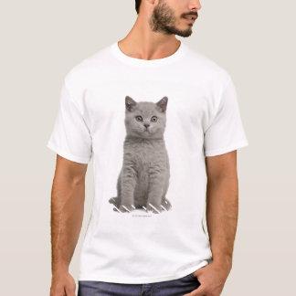 British Shorthair Kitten (10 weeks old) 2 T-Shirt