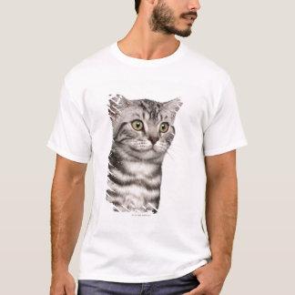 British Shorthair kitten (4 months old) T-Shirt