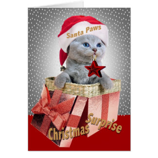 British Shorthair Kitten Christmas Surprise Cards